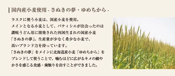 ラスクに使う小麦は、国産小麦のみを使用。 メインとなる小麦として、パティシエが出会ったのは讃岐うどん用に開発された四国生まれの国産小麦 「さぬきの夢」。生産量が少なく希少な小麦で、 高いブランド力を持っています。 「さぬきの夢」をメインに北海道産小麦「オホーツク」をブレンドして使うことで、噛むほどに広がるキメの細やかさを感じる食感・歯触りを出すことができました。